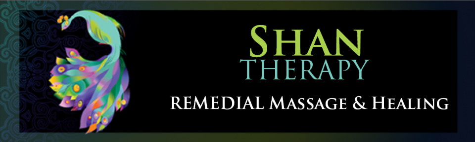 ShanTherapy